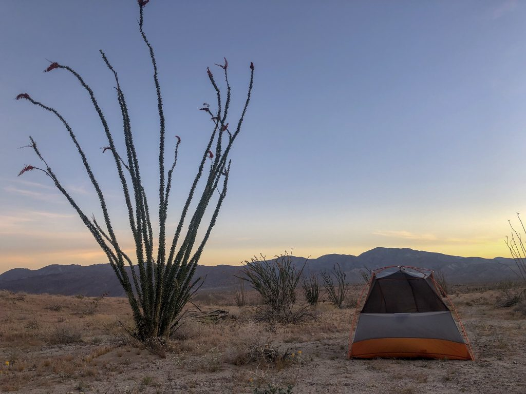 camping at Anza Borrego