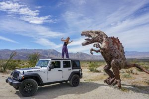 Camping at Anza Borrego State Park: Everything You Need to Know