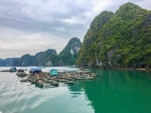 The Best Things to Do in Cat Ba Island