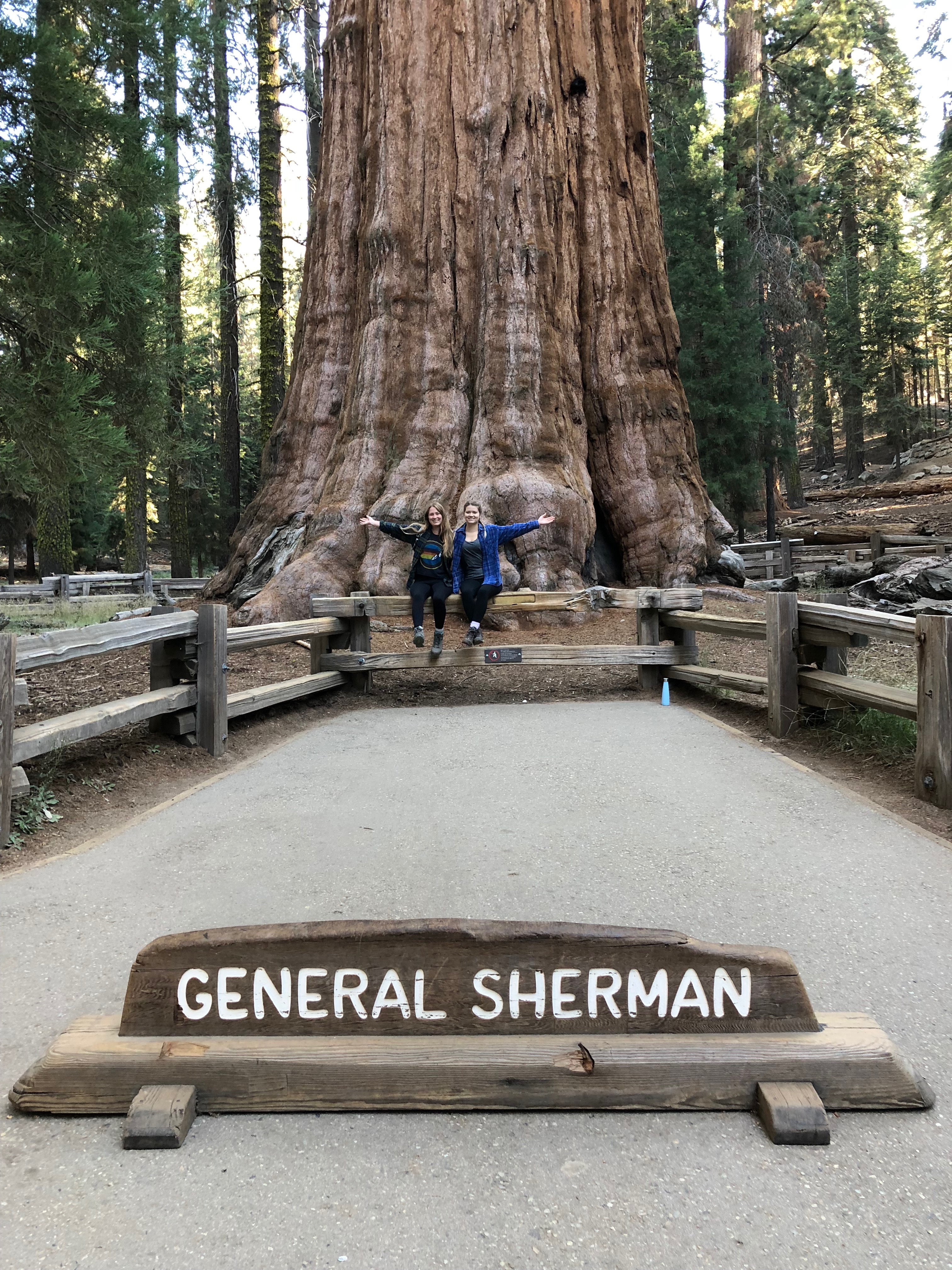 sequoia national park itinerary General Sherman Tree