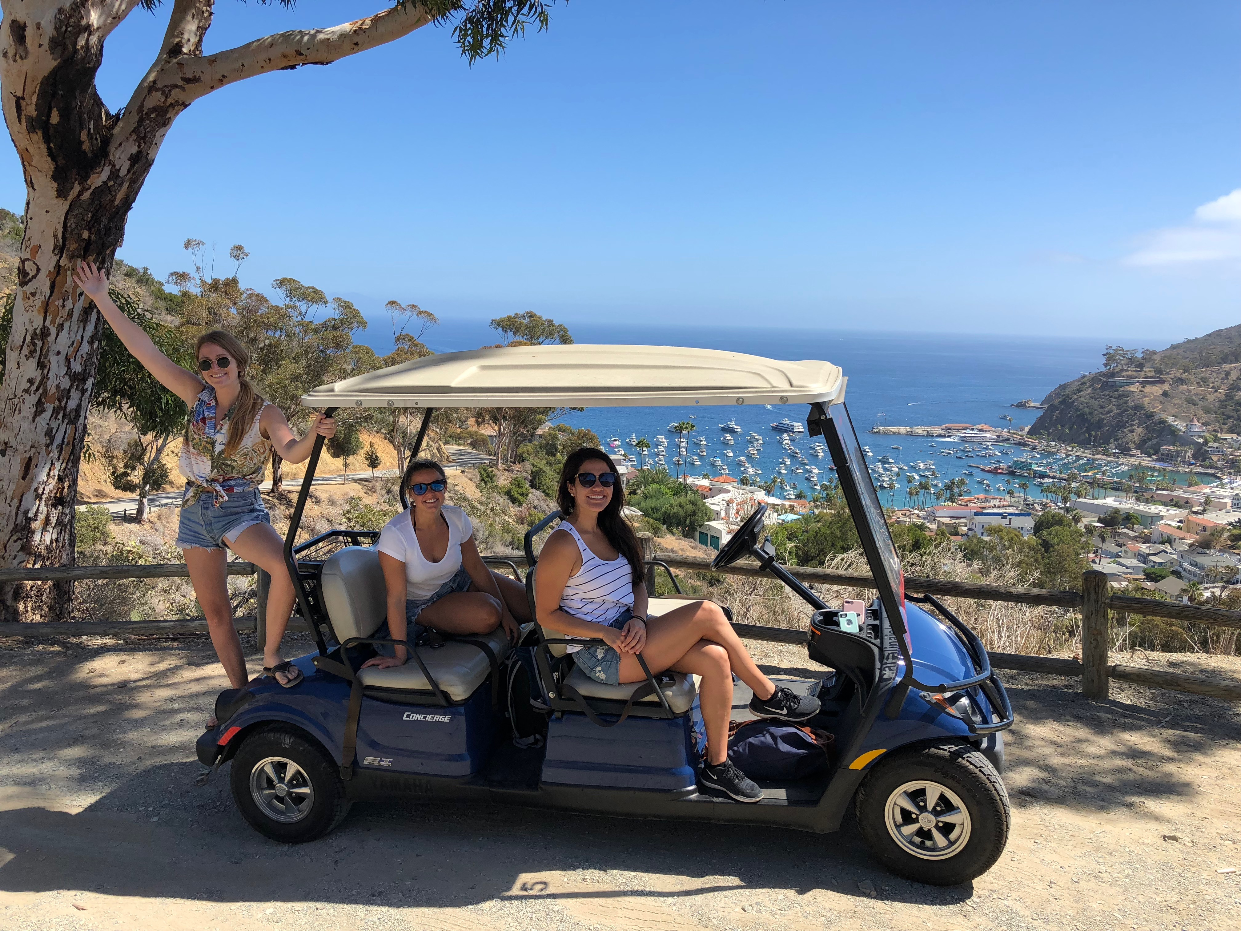 Catalina Island day trip golf cart