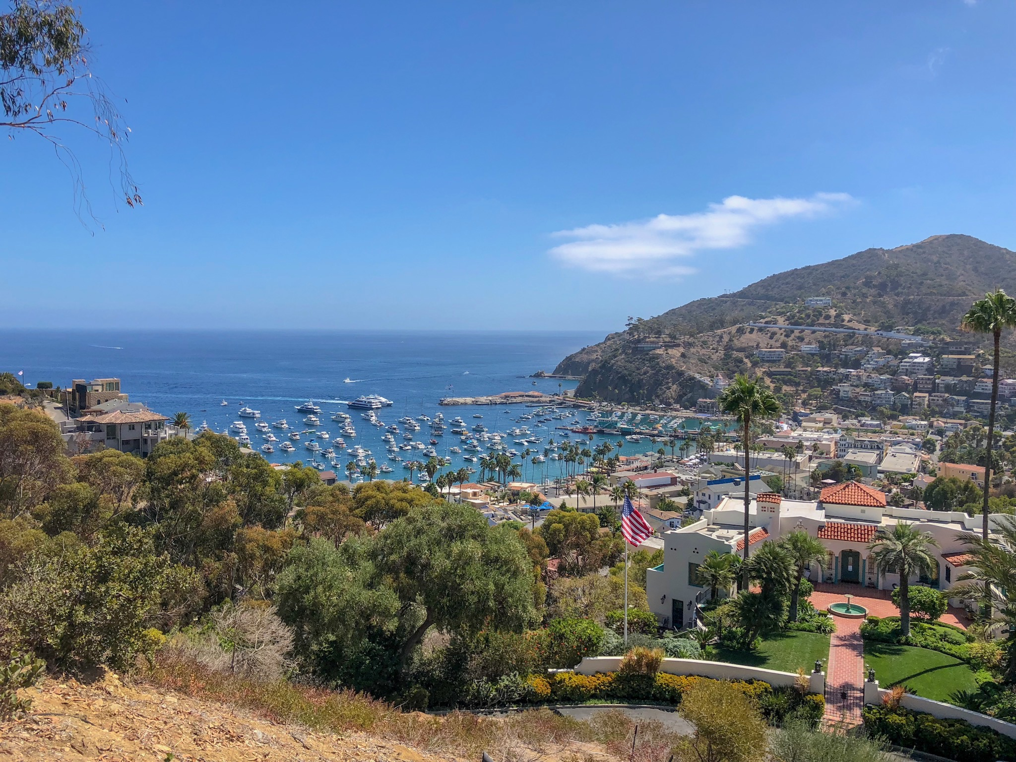 Catalina day trip
