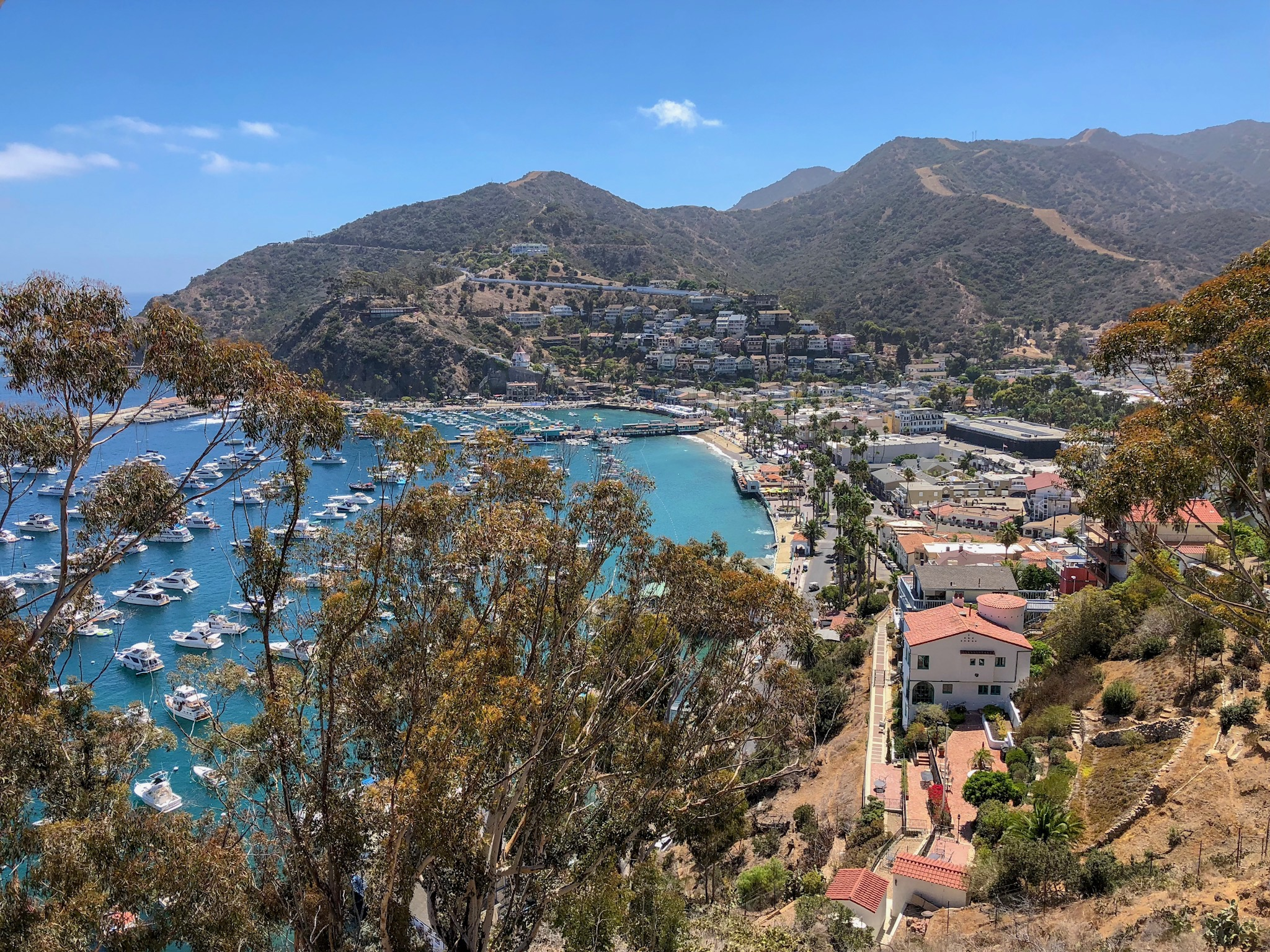 Catalina Island day trip