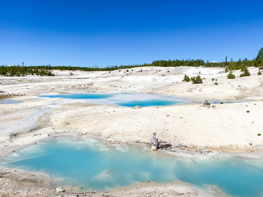 best things to do in yellowstone national park