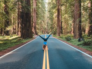 The Best Things to Do in Redwood National Park