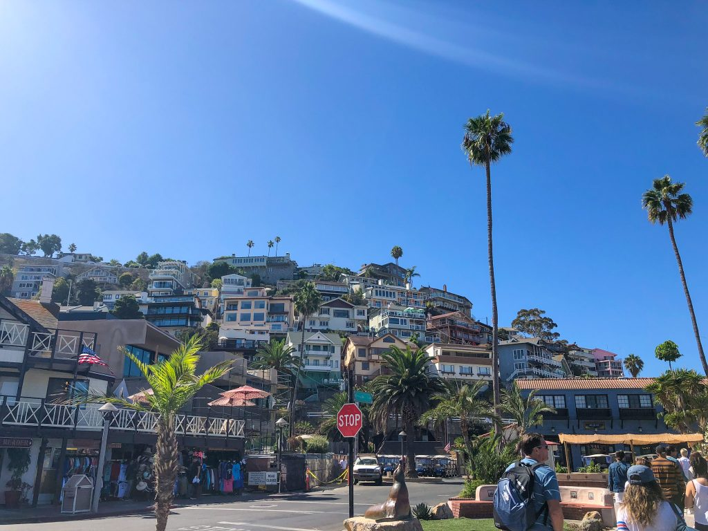 best things to do in catalina in one day
