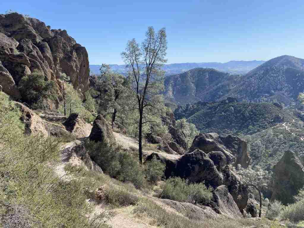 best hikes in pinnacles national park