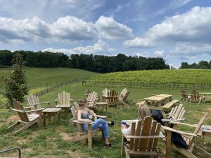 10 Awesome Things to Do in Dahlonega, GA
