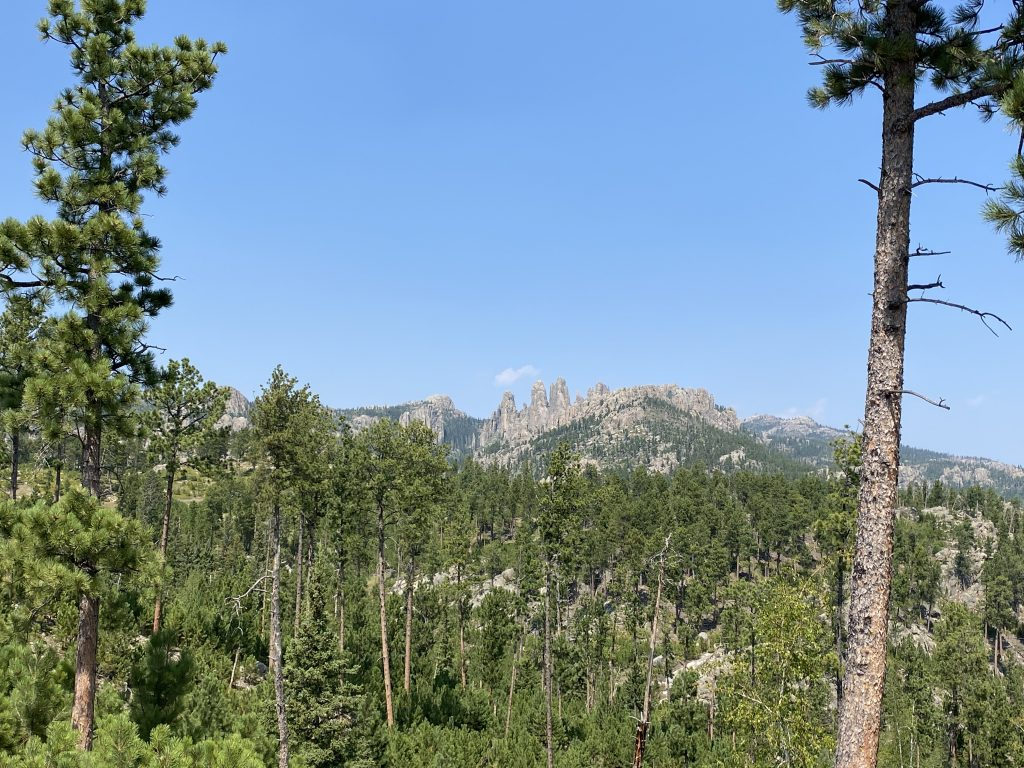 best things to do near mount rushmore